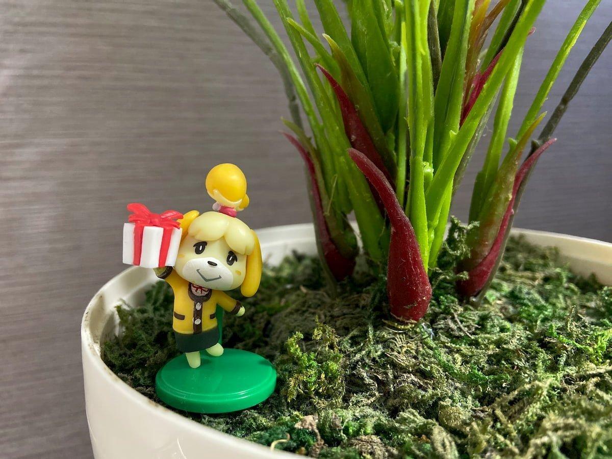 観葉植物に飾ったしずえさん