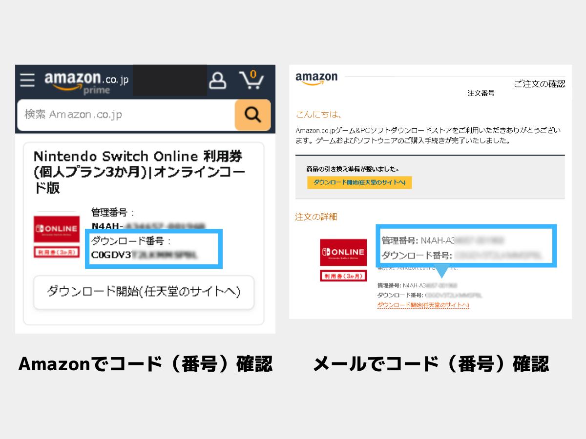 Amazonとメールのダウンロード番号画面
